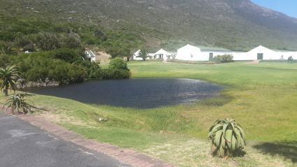 Lake in a Farm