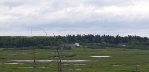 Irving Nature Park 2