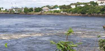 The whirlpools created by the tides of the St John River