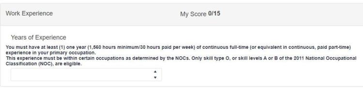 NB Score - Work Experience