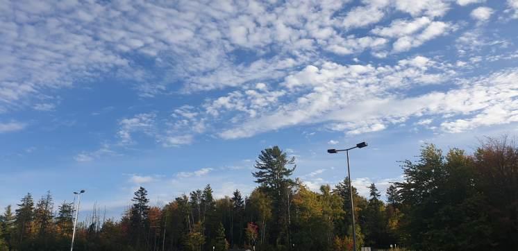 Autumn 1-min
