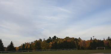 Autumn 14-min