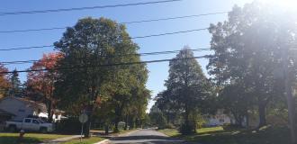 Autumn 7-min