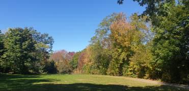 Autumn 8-min